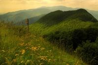 Emilian-Tuscan Apennines