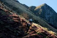 Monte Pania-Southern Apuan Alps