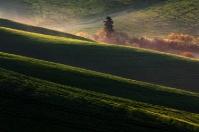 Chianti countryside - Castelfalfi