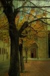 San Domenico Church Arezzo