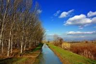 Tuscany - Florence - Fucecchio Marshes