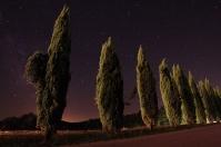 Marco Donati photo gallery