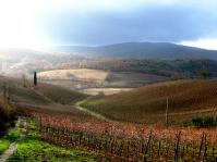 Tuscany rainy fields