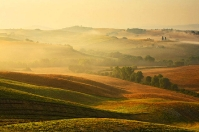 Golden Tuscany Hills in Orcia countryside