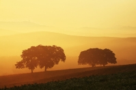 Pienza-Sunset Tuscany Orcia countryside