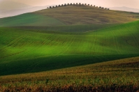 Tuscan hills near Pienza - Siena