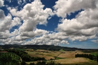 Pisa countryside - Santa-Luce