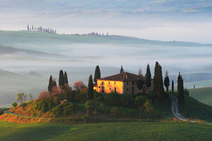 Tuscany cypresses on a Orcia Hill